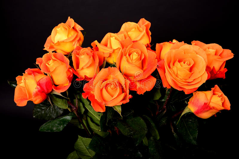 Αυξήθηκε Floral ρύθμιση στοκ εικόνες