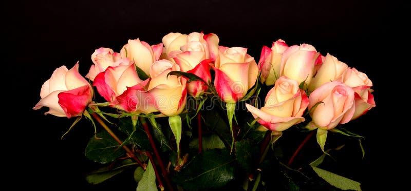 Αυξήθηκε Floral ρύθμιση στοκ εικόνα με δικαίωμα ελεύθερης χρήσης
