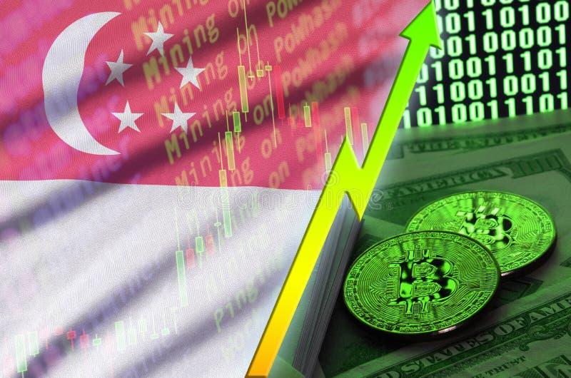 Αυξανόμενη τάση σημαιών και cryptocurrency της Σιγκαπούρης με δύο bitcoins στους λογαριασμούς δολαρίων και την επίδειξη δυαδικού  απεικόνιση αποθεμάτων