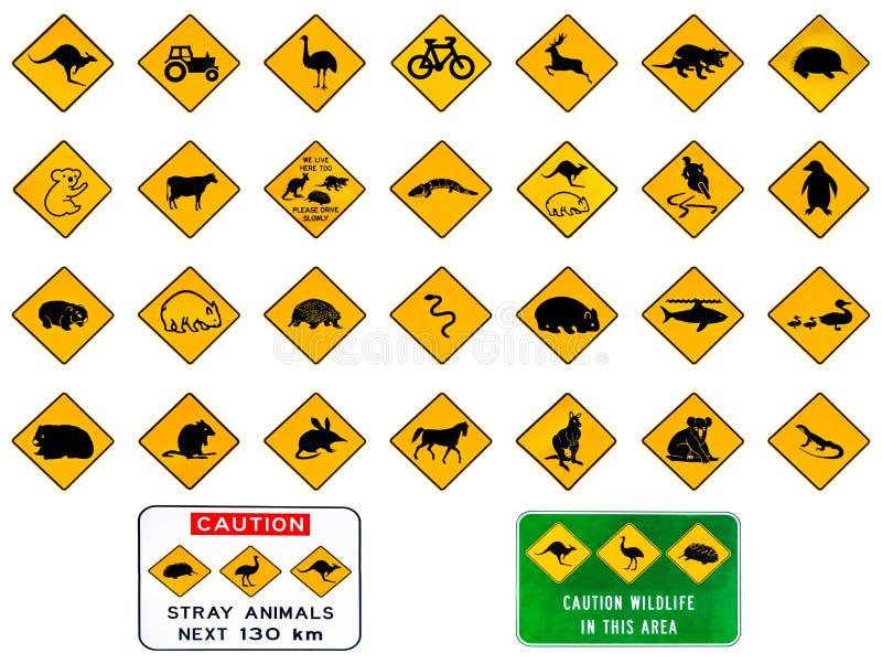 αυστραλιανή προειδοποί διανυσματική απεικόνιση