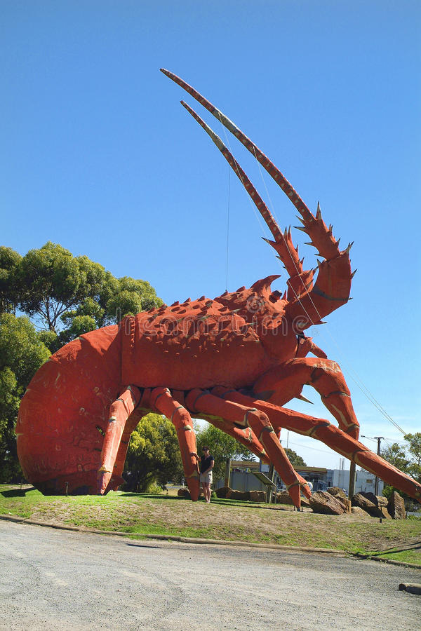 Αυστραλία, SA, SE του Κίνγκστον στοκ φωτογραφίες με δικαίωμα ελεύθερης χρήσης