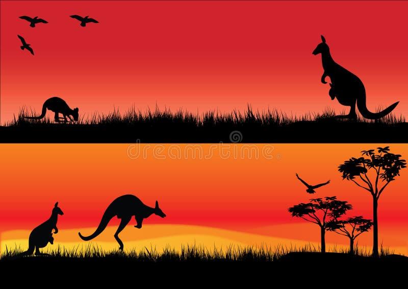 Αυστραλιανά καγκουρό στο ηλιοβασίλεμα διανυσματική απεικόνιση