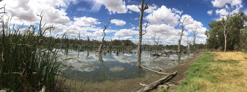 Αυστραλιανό δευτερεύον τοπίο λιμνών στοκ εικόνες