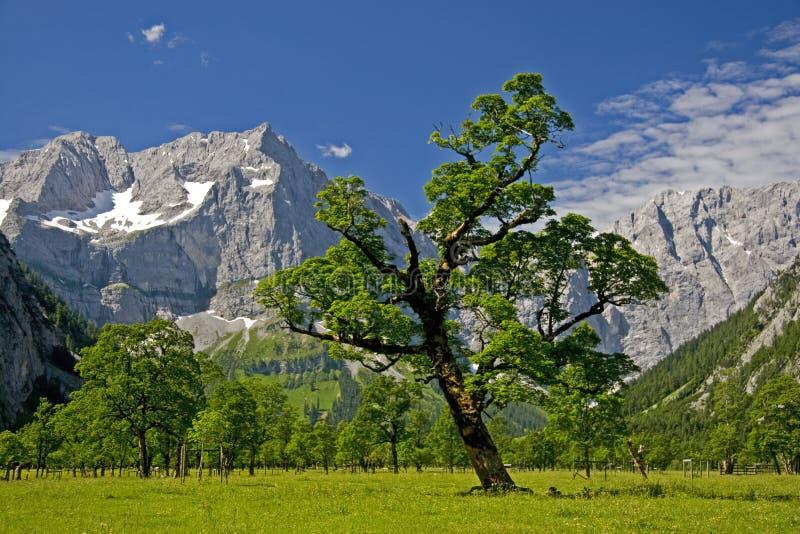 αυστριακό τοπίο στοκ φωτογραφία με δικαίωμα ελεύθερης χρήσης
