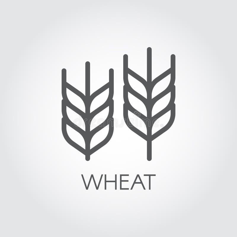 Αυτί του εικονιδίου περιλήψεων σίτου Έννοια γεωργίας και συγκομιδών Στοιχείο σχεδίου για το θέμα μπύρας, τη διαφορετική συσκευασί διανυσματική απεικόνιση