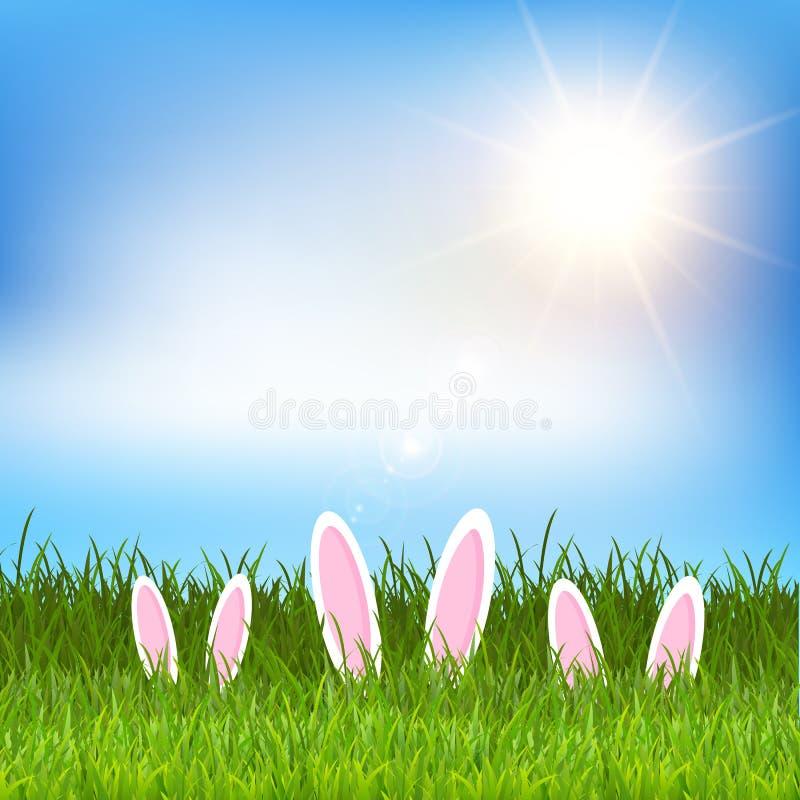 Αυτιά λαγουδάκι Πάσχας που κρύβονται στη χλόη διανυσματική απεικόνιση