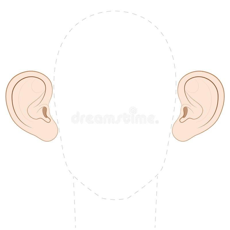 Αυτιά ραβδιών έξω που προεξέχουν τα αυτιά κανατών απεικόνιση αποθεμάτων