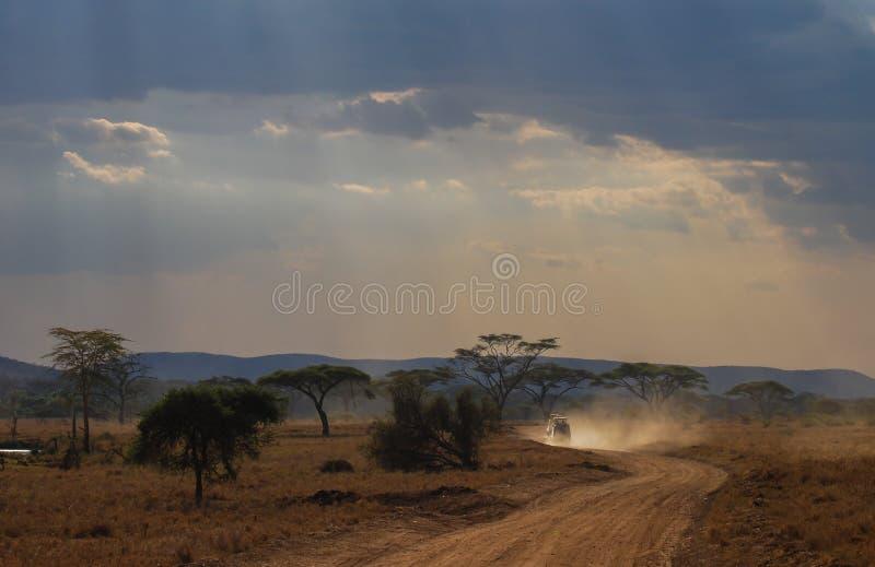 Αυτοκίνητα σαφάρι σε έναν δρόμο με πολλ'ες στροφές στο εθνικό πάρκο Serengeti, Τανζανία, Αφρική στοκ εικόνες