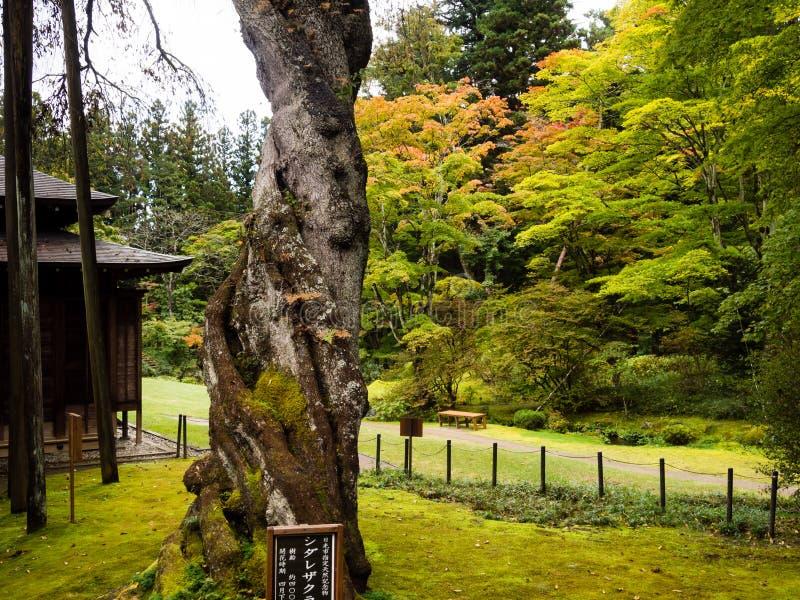 Αυτοκρατορική βίλα Tamozawa σε Nikko, Ιαπωνία στοκ εικόνες με δικαίωμα ελεύθερης χρήσης