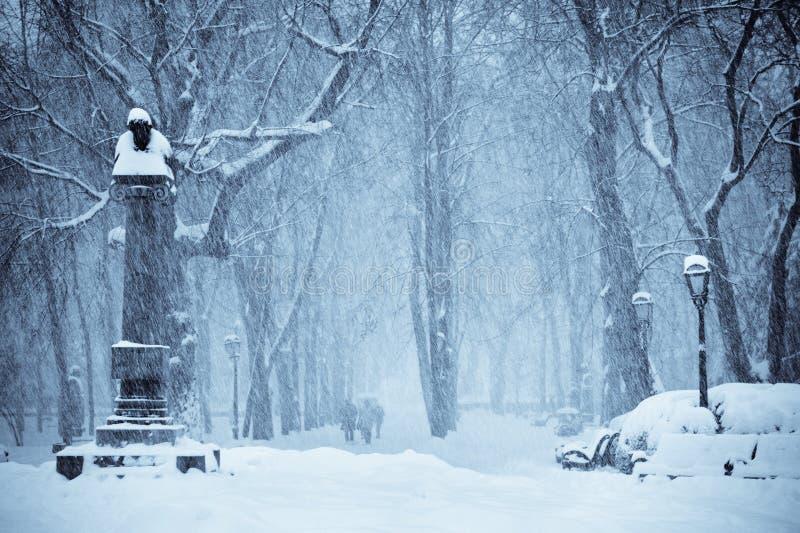 αφήστε το χιόνι στοκ φωτογραφίες