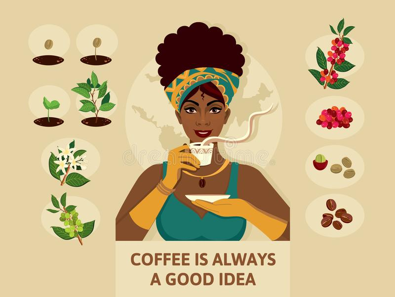 Αφίσα με μια γυναίκα στα κομψά ενδύματα, η οποία κρατά ένα φλιτζάνι του καφέ Διαδικασία και ένα δέντρο και τα φασόλια καφέ διανυσματική απεικόνιση