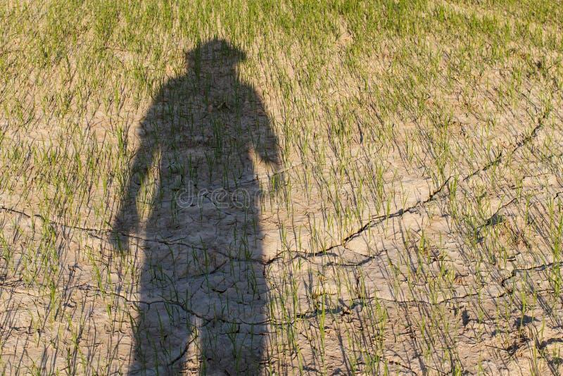 Αφαίρεση των αγροτών που πάσχουν από την ξηρασία στοκ φωτογραφία