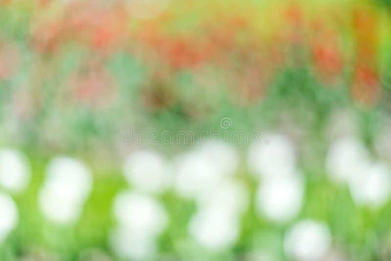 Αφαίρεση των μουτζουρωμένων χρωμάτων του κοκκίνου, πράσινος και άσπρος στοκ φωτογραφίες με δικαίωμα ελεύθερης χρήσης