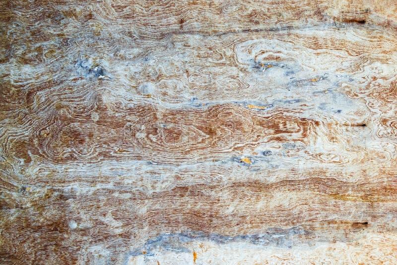 Αφηρημένα ξύλινα σύσταση και υπόβαθρο στοκ φωτογραφία