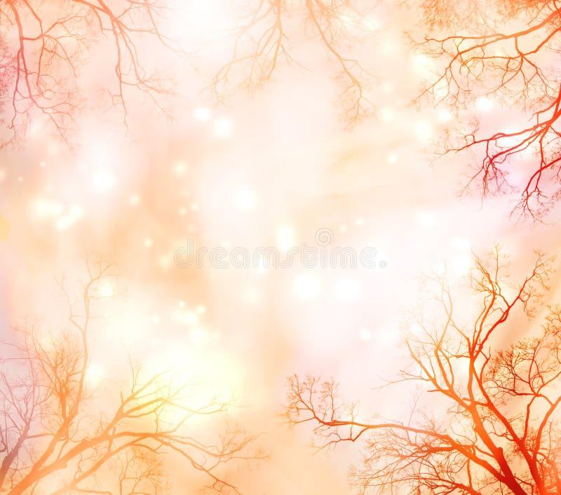 Αφηρημένη ανασκόπηση με τα σύνορα δέντρων διανυσματική απεικόνιση