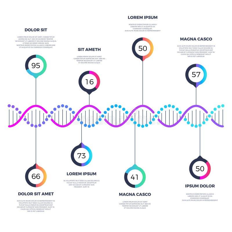 Αφηρημένη διανυσματική επιχείρηση μορίων DNA infographic με τις επιλογές διανυσματική απεικόνιση