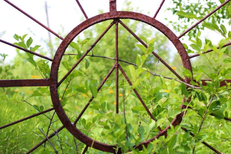 αφηρημένη εικόνα ήλιων στην παλαιά σκουριασμένη πύλη σιδήρου στοκ φωτογραφία με δικαίωμα ελεύθερης χρήσης