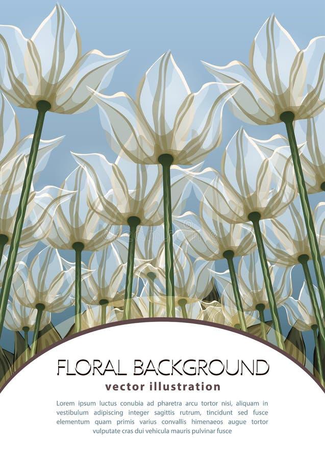 Αφηρημένη κατώτατη άποψη λουλουδιών, διανυσματική απεικόνιση, ζωηρόχρωμο σχέδιο Συρμένοι άσπροι οφθαλμοί, πέταλα και μίσχοι που α διανυσματική απεικόνιση
