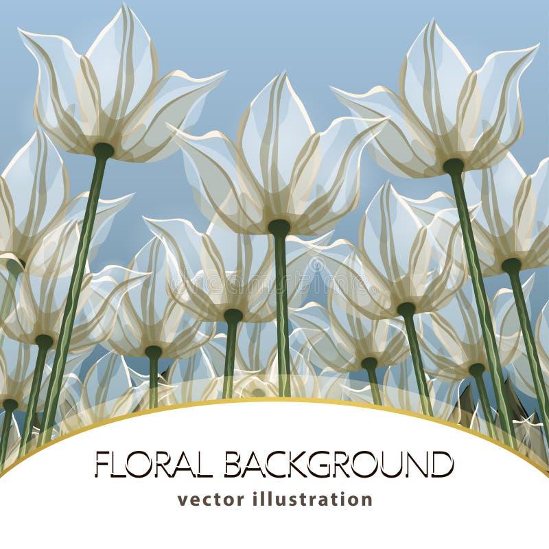 Αφηρημένη κατώτατη άποψη λουλουδιών, διανυσματική απεικόνιση, ζωηρόχρωμο σχέδιο Συρμένοι άσπροι οφθαλμοί, πέταλα και μίσχοι που α απεικόνιση αποθεμάτων