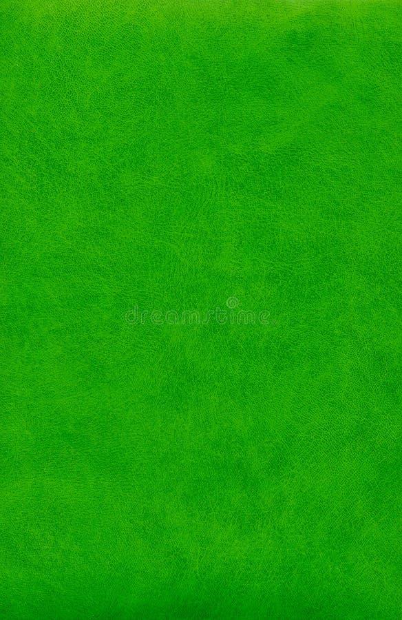 Αφηρημένη πράσινη σύσταση δέρματος στοκ εικόνες με δικαίωμα ελεύθερης χρήσης