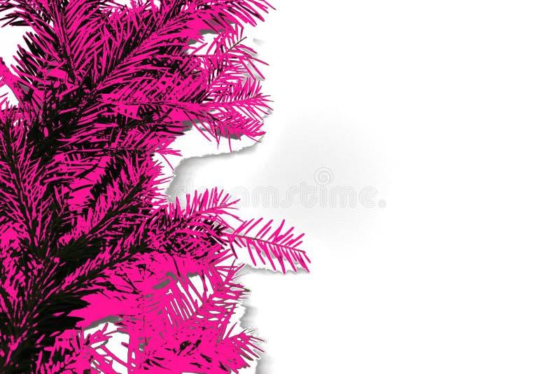 Αφηρημένη φωτογραφία των κωνοφόρων κλάδων στο πλαστικό ρόδινο χρώμα διανυσματική απεικόνιση