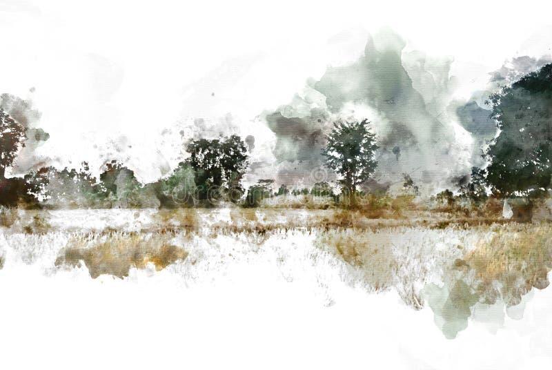 Αφηρημένοι ζωηρόχρωμοι τοπίο και τομέας δέντρων στο υπόβαθρο χρωμάτων απεικόνισης watercolor απεικόνιση αποθεμάτων