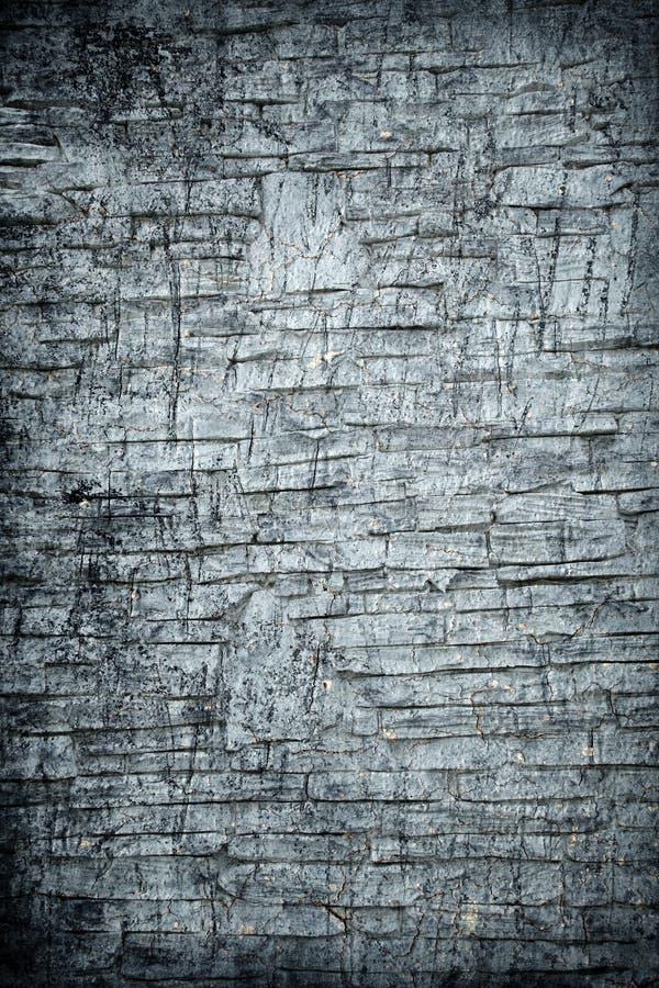 αφηρημένος τοίχος βράχου &a στοκ φωτογραφίες με δικαίωμα ελεύθερης χρήσης
