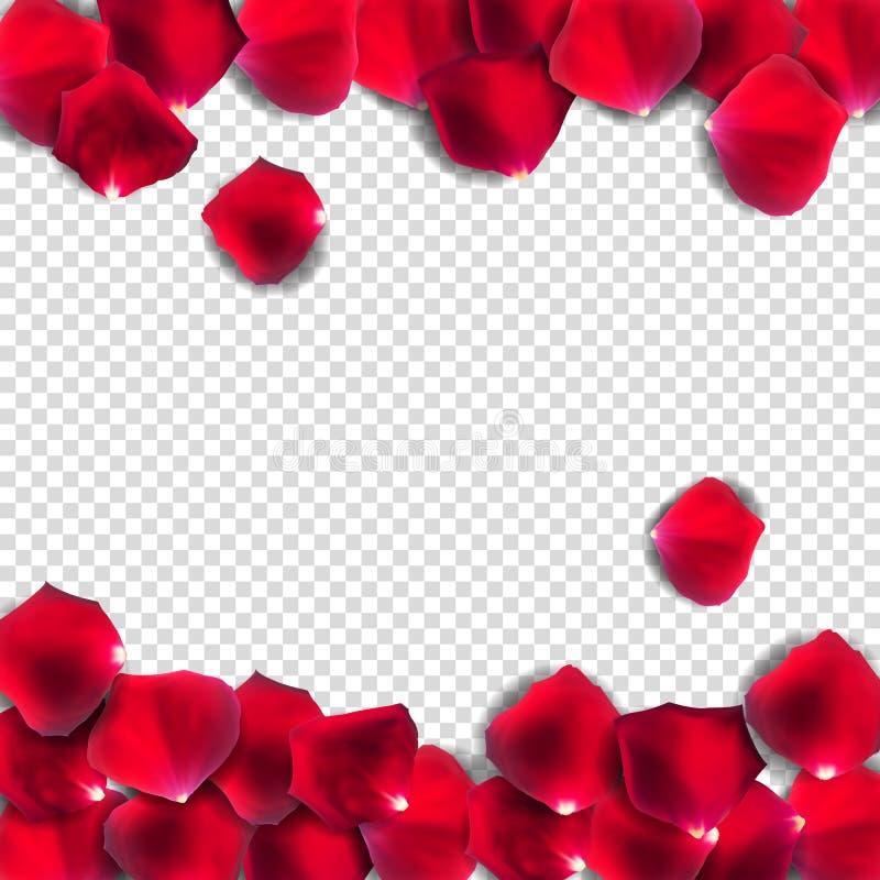 Αφηρημένος φυσικός αυξήθηκε πέταλα στο διαφανές υπόβαθρο ρεαλιστικό διανυσματική απεικόνιση