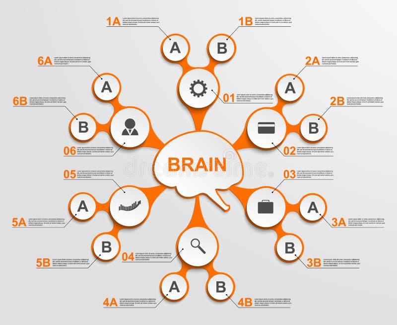 Αφηρημένος infographic ως μεταβολικές μορφές στο κέντρο του εγκεφάλου στοιχεία τέσσερα σχεδίου ανασκόπησης snowflakes λευκό διανυσματική απεικόνιση