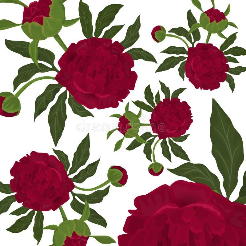Αφηρημένο άνευ ραφής σχέδιο με τα απομονωμένους κόκκινους τριαντάφυλλα ή piony, τους οφθαλμούς και τα πράσινα φύλλα στο άσπρο υπό απεικόνιση αποθεμάτων