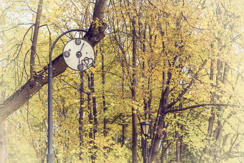 Αφηρημένο διακοσμητικό σπασμένο εκλεκτής ποιότητας ρολόι σε ένα παλαιό πάρκο Έννοια της αλλαγής των εποχών, νοσταλγική διάθεση φθ στοκ εικόνες