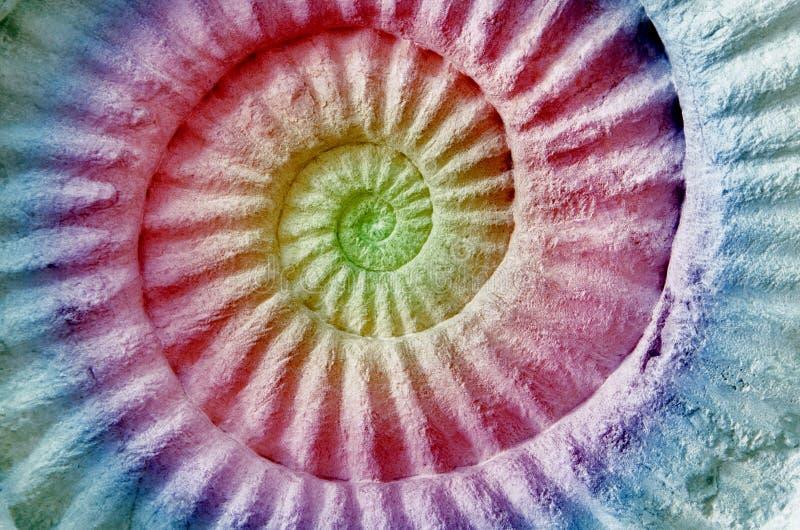 Αφηρημένο ζωηρόχρωμο Ammonite προϊστορικό απολίθωμα στοκ εικόνες