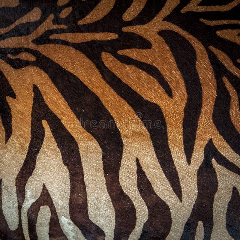 Αφηρημένο ζωικό άνευ ραφής σχέδιο τυπωμένων υλών Με ραβδώσεις, λωρίδες τιγρών Ριγωτή σύσταση υποβάθρου επανάληψης Σχέδιο υφάσματο στοκ εικόνες με δικαίωμα ελεύθερης χρήσης