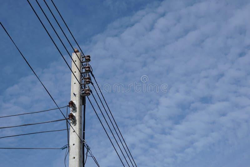 Αφηρημένο ηλεκτρικό καλώδιο με το πουλί στοκ φωτογραφία