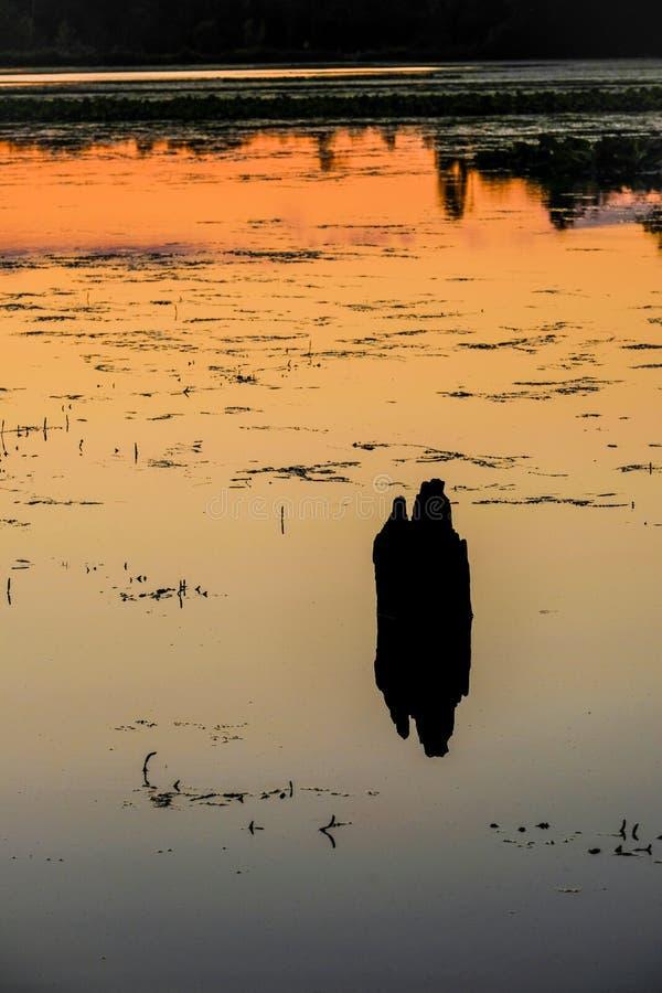 Αφηρημένο πορτοκαλί ηλιοβασίλεμα που απεικονίζεται στη λίμνη του Μίτσιγκαν στοκ εικόνα