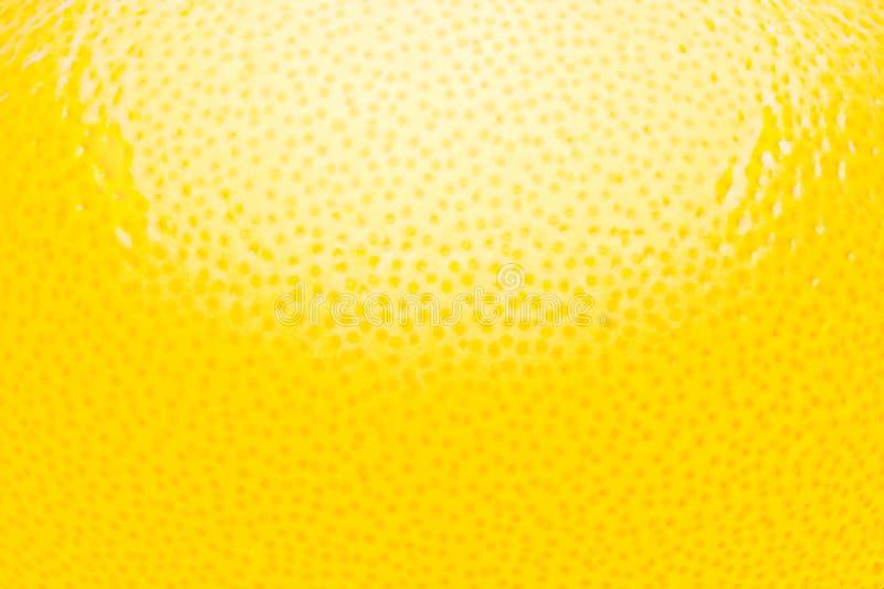 Αφηρημένο υπόβαθρο εσπεριδοειδών φλούδας λεμονιών στοκ εικόνα