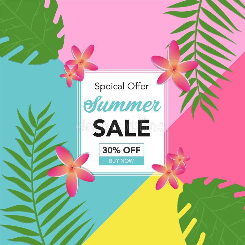 Αφηρημένο υπόβαθρο θερινής πώλησης με τα φύλλα φοινικών και το όμορφο λουλούδι Πρότυπο εμβλημάτων θερινής πώλησης για τα κοινωνικ απεικόνιση αποθεμάτων