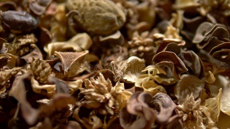 Αφηρημένο υπόβαθρο, σύσταση των ξηρών λουλουδιών potpourri E ξηροί λουλούδια και σπόροι που χρησιμοποιούνται για aromatherapy στοκ εικόνα