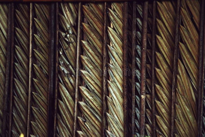 Αφηρημένο υπόβαθρο φύσης grunge βρώμικο ξηρό, τοίχος σπιτιών στοκ φωτογραφία με δικαίωμα ελεύθερης χρήσης