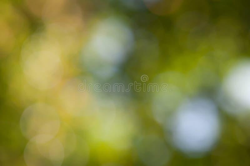 Αφηρημένο φυσικό ελαφρύ υπόβαθρο Defocused στοκ φωτογραφία με δικαίωμα ελεύθερης χρήσης