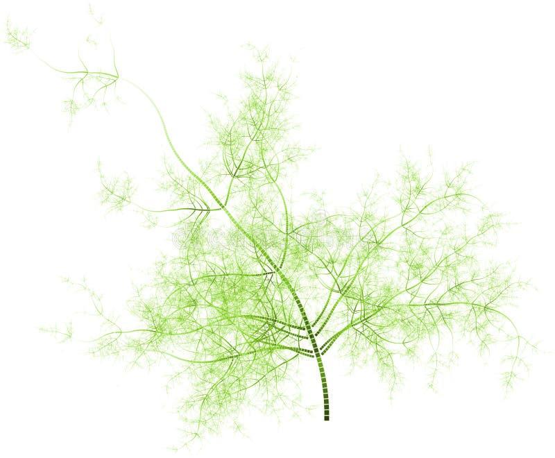 αφηρημένο φυτό στοκ εικόνα με δικαίωμα ελεύθερης χρήσης