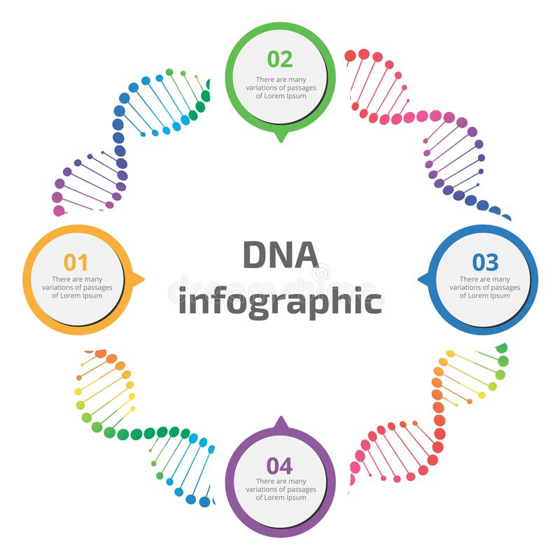 Αφηρημένο infographic DNA διανυσματική απεικόνιση