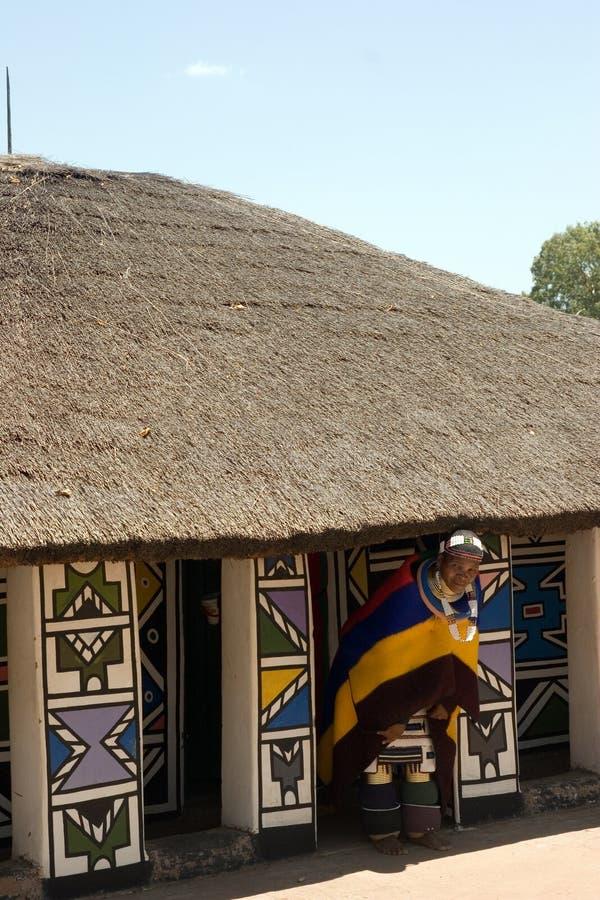 αφρικανική ζωή στοκ εικόνα με δικαίωμα ελεύθερης χρήσης
