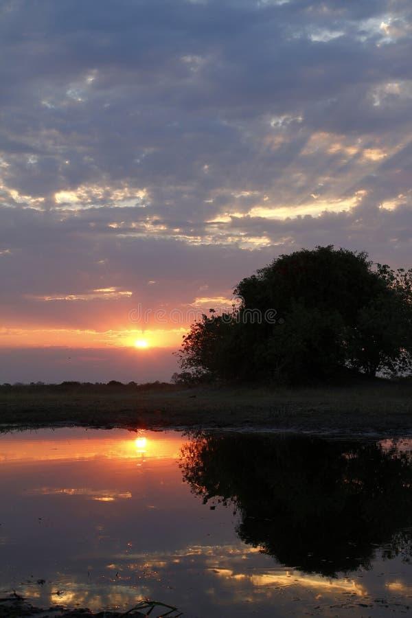 Αφρικανικό ηλιοβασίλεμα Sundowner στοκ εικόνες