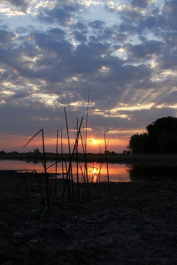 Αφρικανικό ηλιοβασίλεμα Sundowner στοκ εικόνα