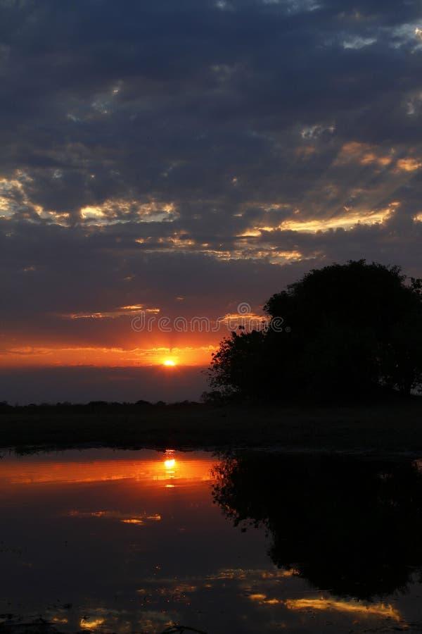 Αφρικανικό ηλιοβασίλεμα Sundowner στοκ φωτογραφίες με δικαίωμα ελεύθερης χρήσης
