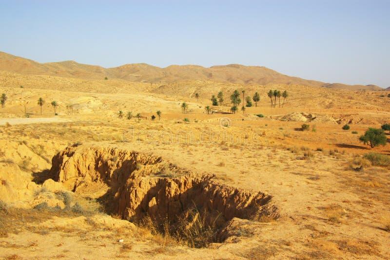 αφρικανικό τοπίο ερήμων στοκ εικόνες με δικαίωμα ελεύθερης χρήσης