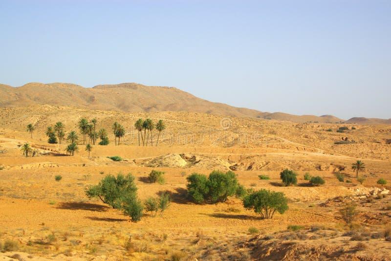 αφρικανικό τοπίο ερήμων στοκ εικόνα
