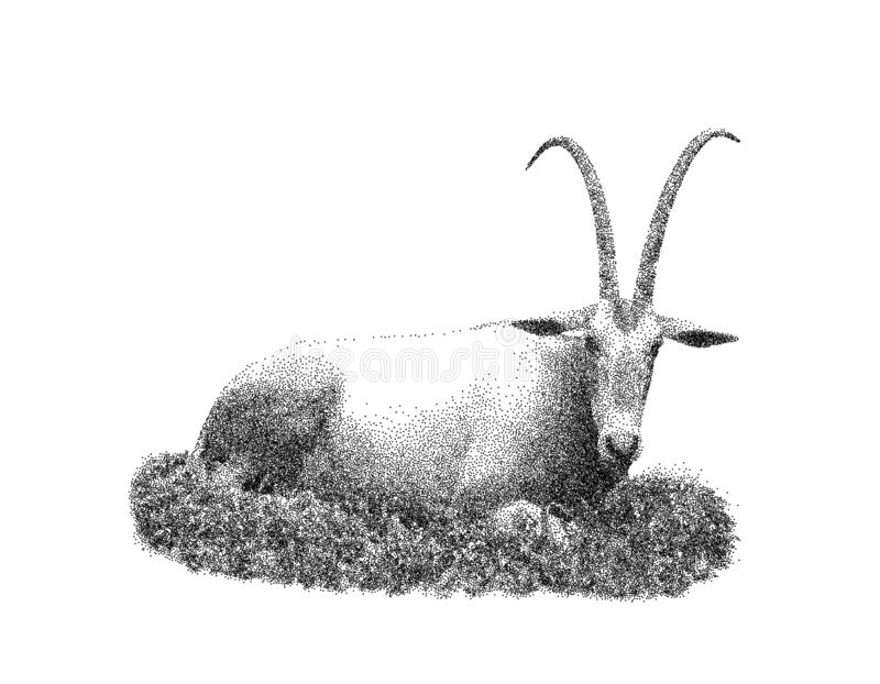 Αφρικανοί εγκαταλείπουν τη ζωή gazella oryx η ανασκόπηση απομόνωσε το λευκό επίσης corel σύρετε το διάνυσμα απεικόνισης απεικόνιση αποθεμάτων