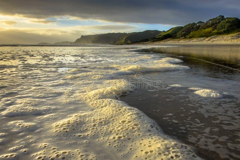 Αφρός στην κυματωγή της ακτής Pakiri, Νέα Ζηλανδία στοκ φωτογραφία με δικαίωμα ελεύθερης χρήσης